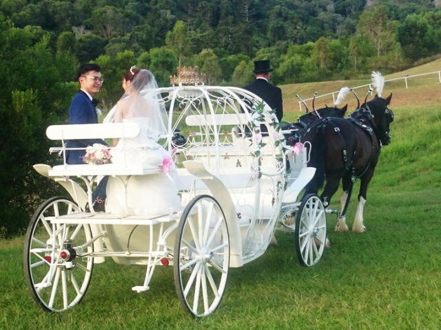 Cinderella Carriage, this carriage is for those truly fairytale events