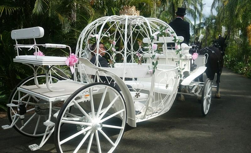 Cinderella Carriages - Wedding - Drayhorse Shires