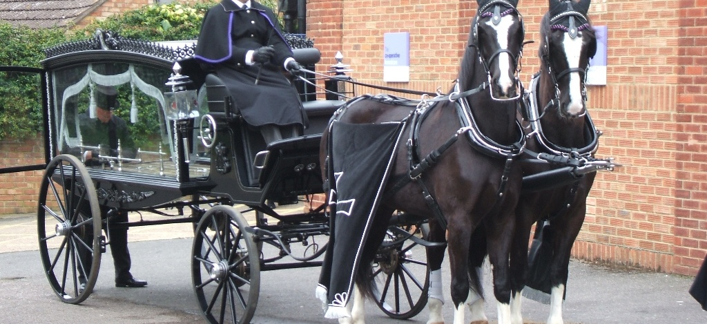 Funeral-Carriages-Drayhorse-Shires, Horse and Carriage, Brisbane, Sunshine Coast, Gold Coast