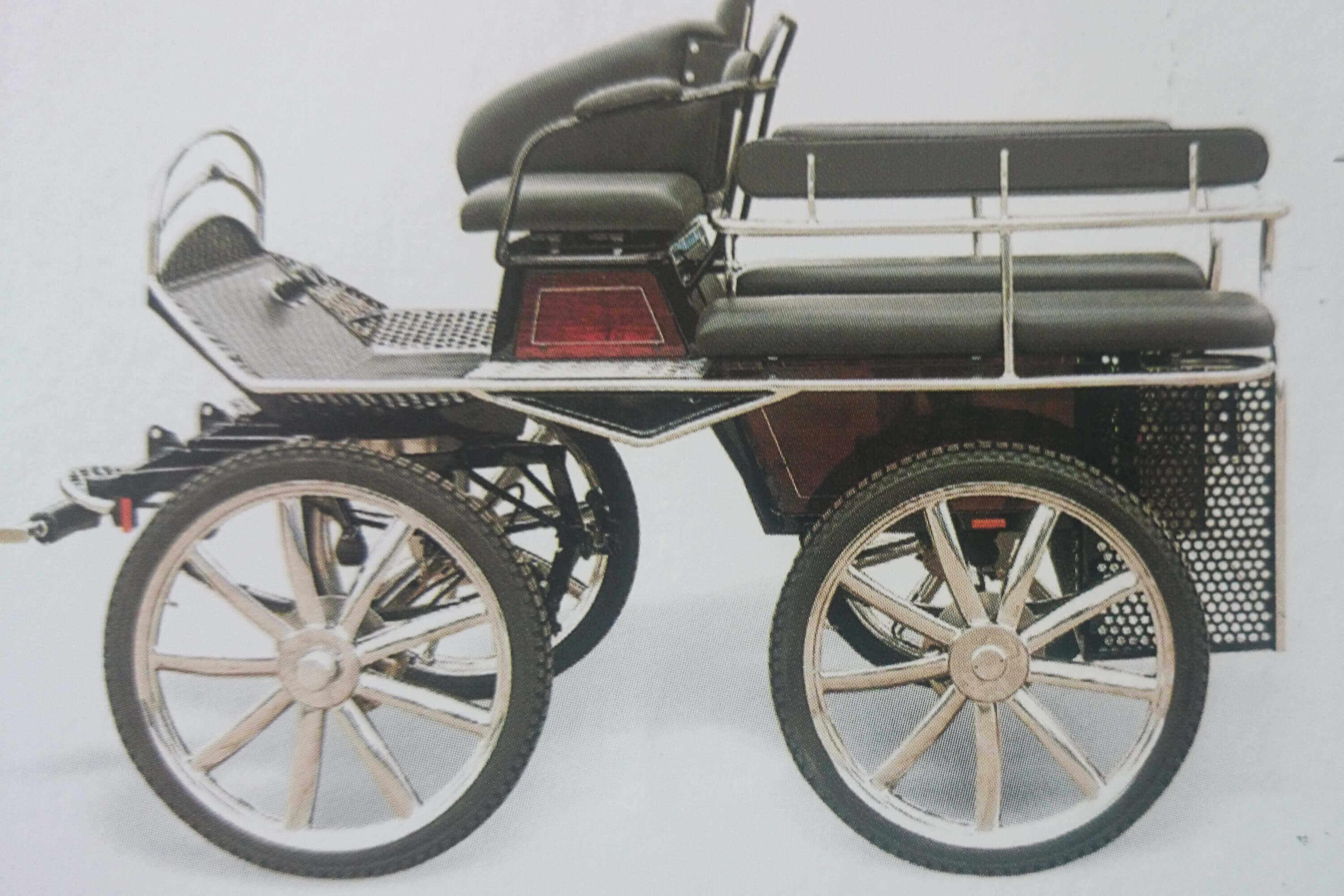 Treningswagen Carriage - Drayhorse Shires Australia