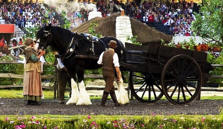 Drayhorse Shires horsedrawn services, carriage rides, weddings, funerals, filming, birthday and anniversaries, formals/proms