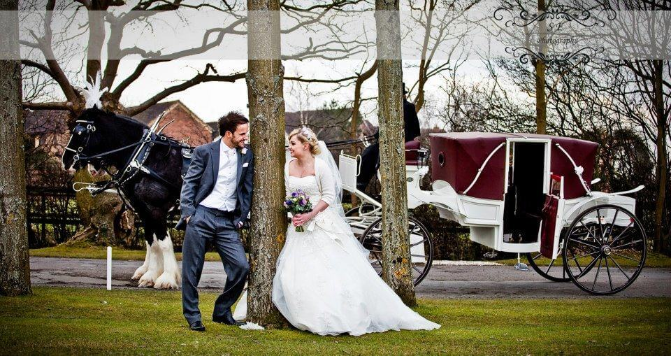 Twin Hooded Landau - Suitable for single, pair or team Seat 4 passengers plus driver and groom, optional rear double seat for grooms Disc brakes, Handbrake, Deep buttoned upholstery Clip on carpets removable to reveal rubber mats Choice of colours