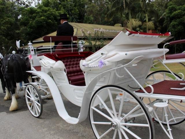 Vis A Vis Carriage - Drayhorse Shires, Brisbane, Gold Coast