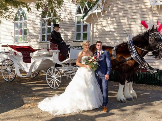 Vis A Vis Carriage Wedding - Drayhorse Shires