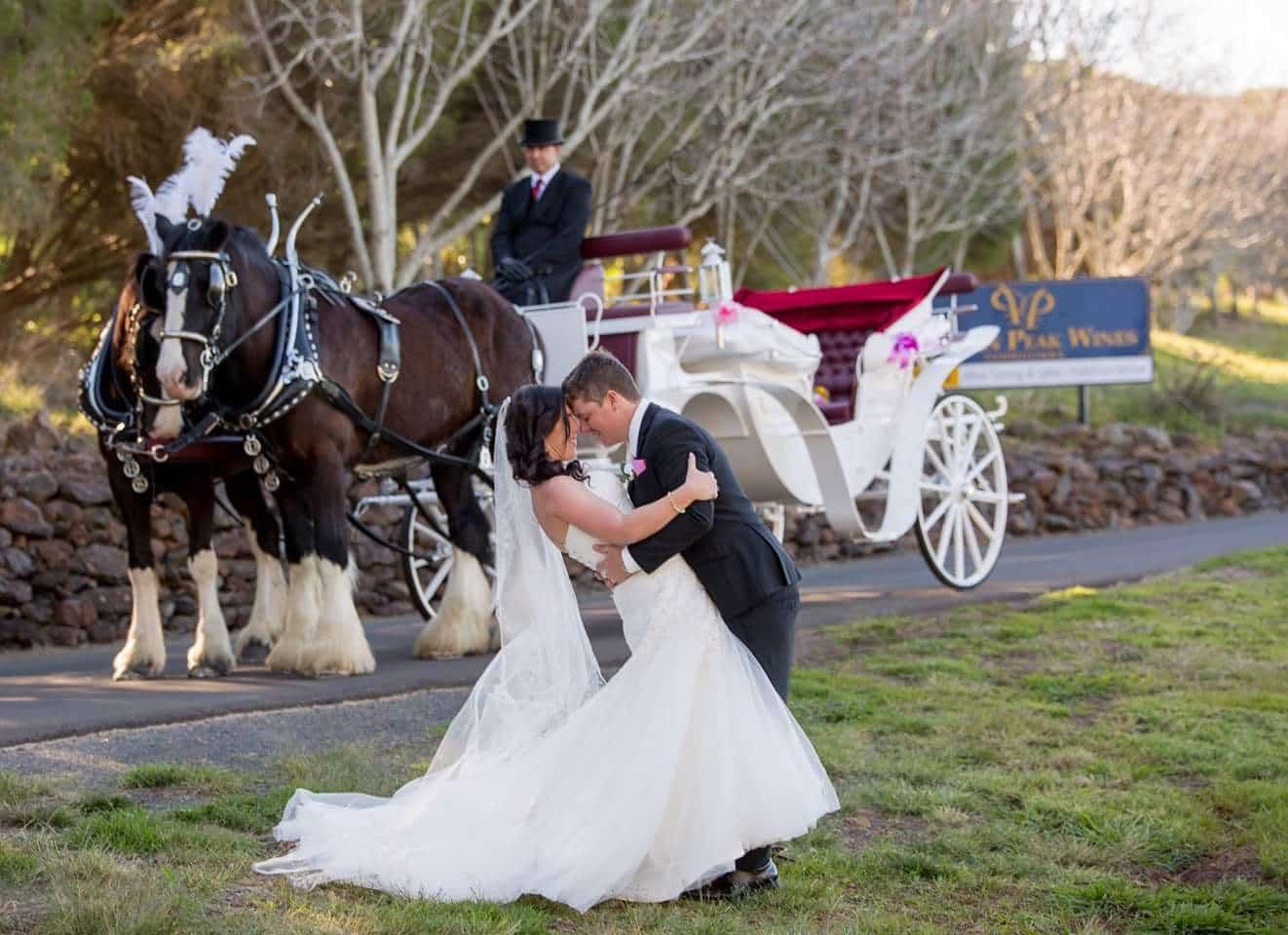VIS A VIS Carriage - Drayhorse Shires Wedding - Brisbane