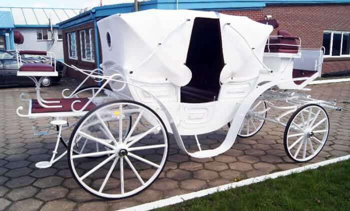 Vis-A-Vis-Carriage-Drayhorse Shires, Brisbane, Gold Coast