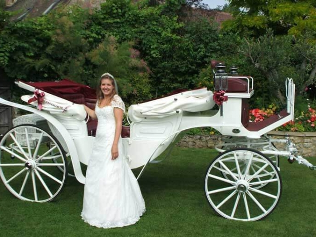 Vis A Vis CarriageThis luxury carriage seats 4 adults comfortably in the rear with front seat for driver and groom.