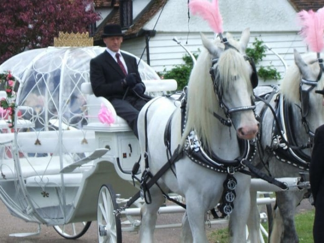 Cinderella Carriage Hire or Sale Brisbane, Gold Coast, Sunshine Coast