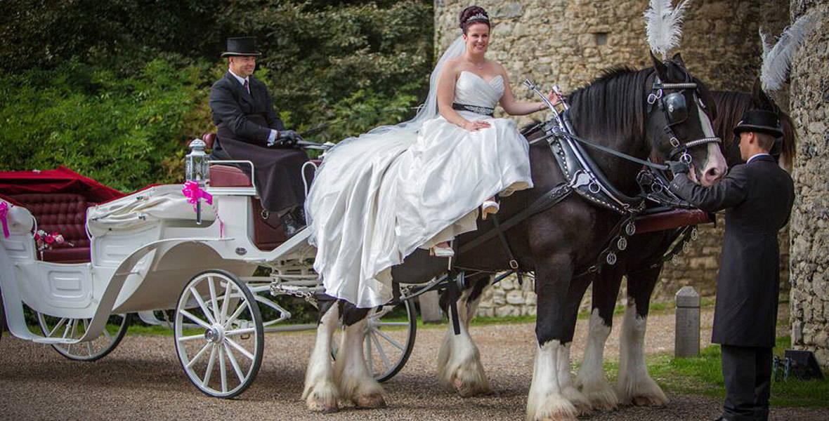 Traditional Wedding Horse and Carriages