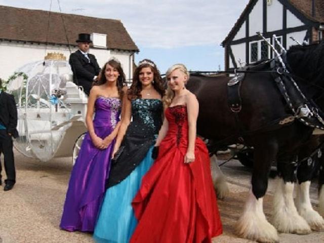 Formal Drayhorse Shires Cinderella Carriage-Brisbane-Gold Coast