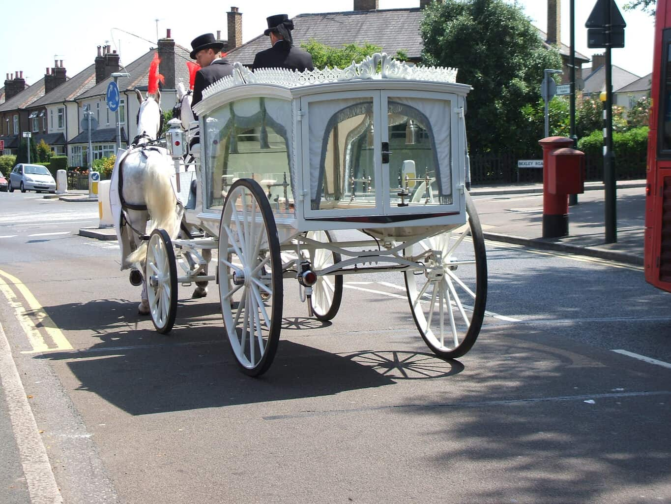 Glass Hearse Carriage - Drayhorse Shires Australia
