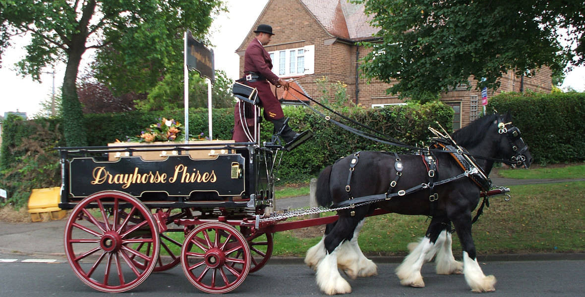 These are both suitable for standard funerals and traditional farm funerals. In addition, we are able to offer mourners carriages for the family to follow the hearse. Our horses are always dressed in matching covers for all funerals.