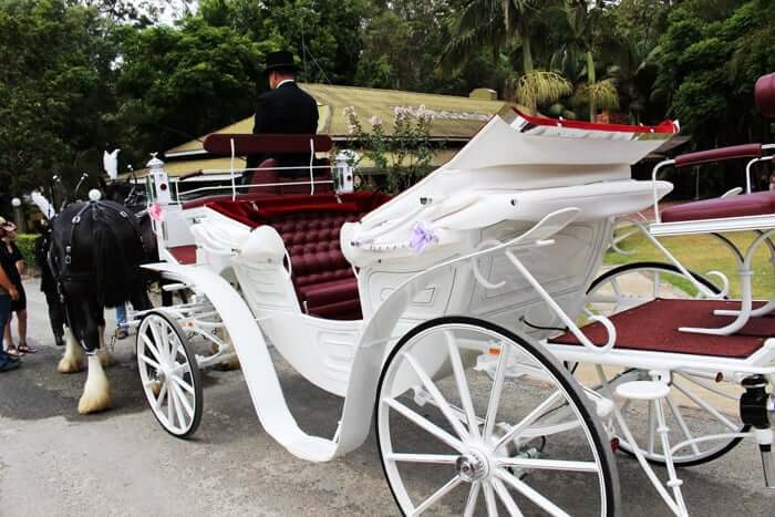 Vis A Vis Carriage - Drayhorse Shires Horse and Carriages, Brisbane, Gold Coast