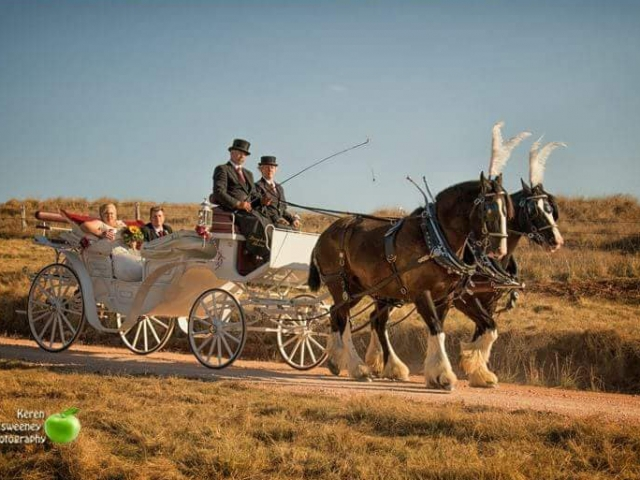 Vis A Vis Carriage Hire with Drayhorse Shires, Brisbane, Gold Coast