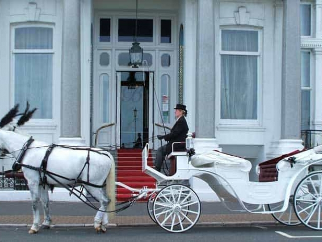 Vis A Vis White Carriage with Horses - Drayhorse Shires Brisbane