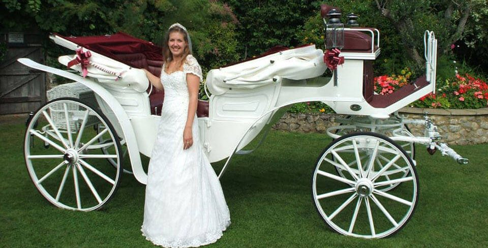 "Drayhorse Shire have for hire ""Traditional Wedding Horse and Carriages"" for your Special Day. Stunning white & burgundy carriages available for any special occasion."