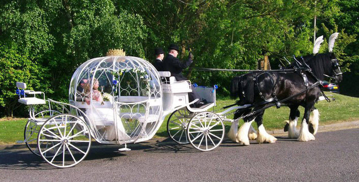 Cinderella Pumpkin Carriage for a Fairytale Wedding, Brisbane, Gold Coast, Sunshine Coast
