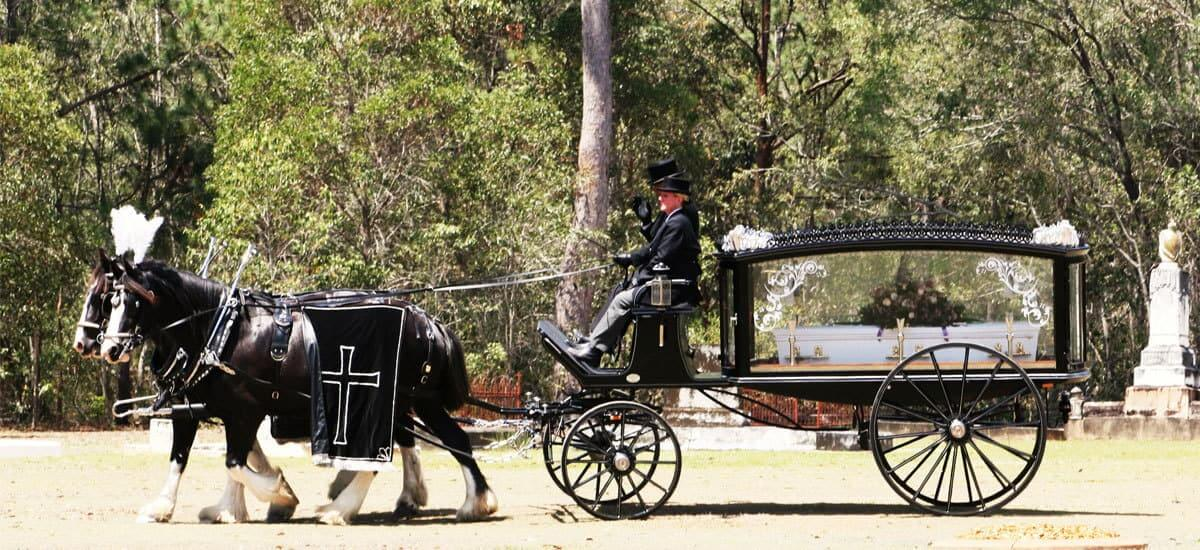 Funeral-Carriages-Drayhorse-Shires, Horse and Carriage