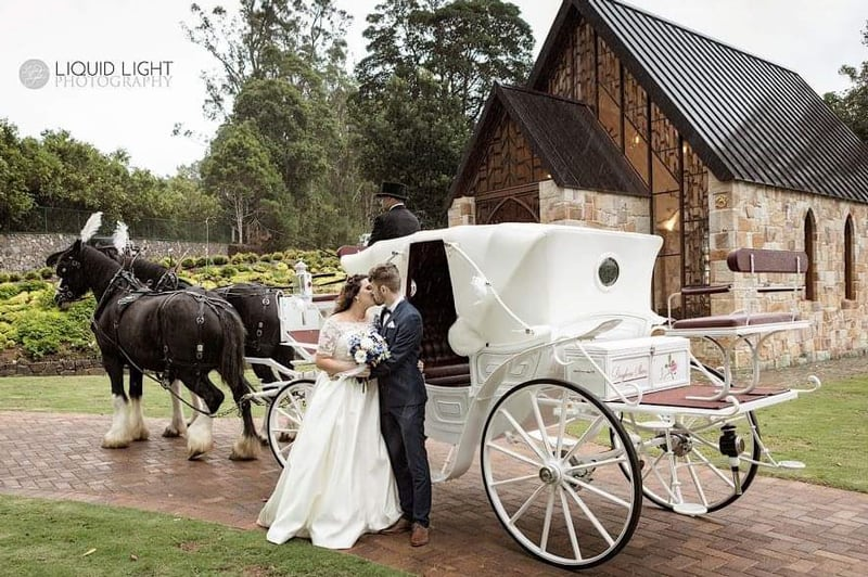 Vis A Vis Wedding Carriage - Drayhorse Shires Australia, Brisbane, Gold Coast