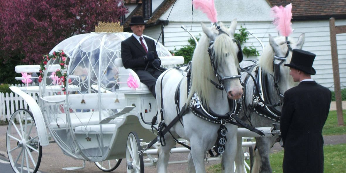 For that extra fairy tale feel to your wedding or special event this carriage comes with fairy lights.
