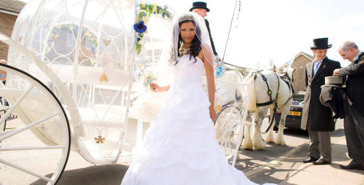 Cinderella Pumpkin Wedding Carriage