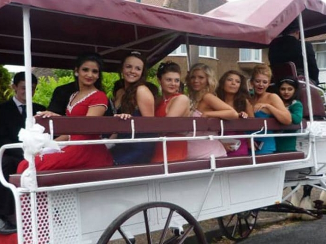 Formals-Drayhorse-Horse-and-Carriage-Hire-Brisbane