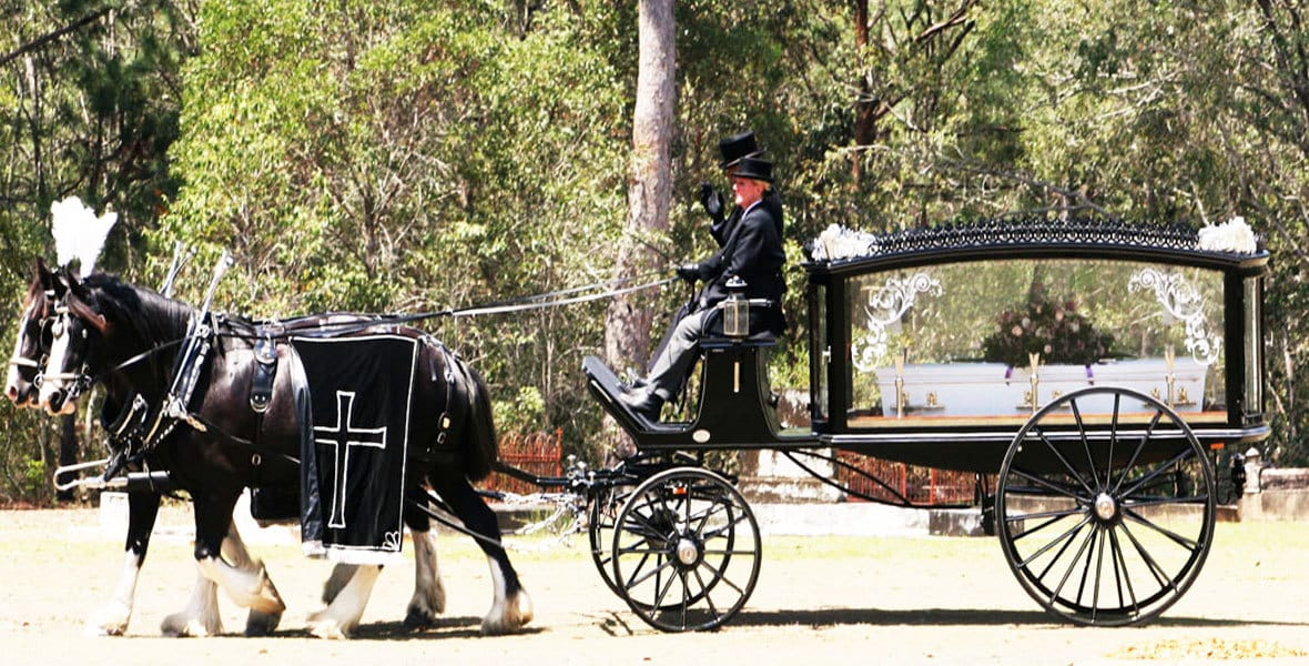 Funeral Carriage and Horses for Hire, Brisbane, Sunshine Coast, Northern NSW, Gold Coast