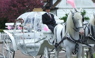 Cinderella Carriages