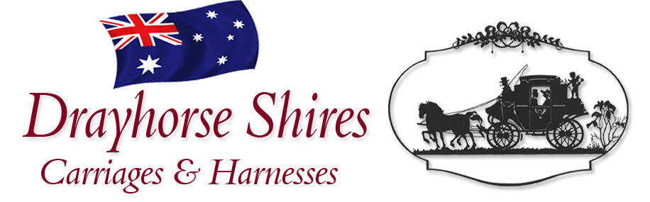 Drayhorse Shires Carriages for Sale - Glinkowski Carriage Distributor