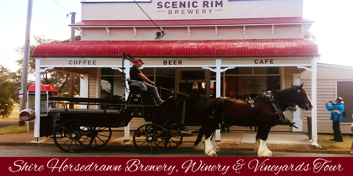 Shire Brewery, Winery and Vineyard Tours - Scenic Rrim - Drayhorse Shires