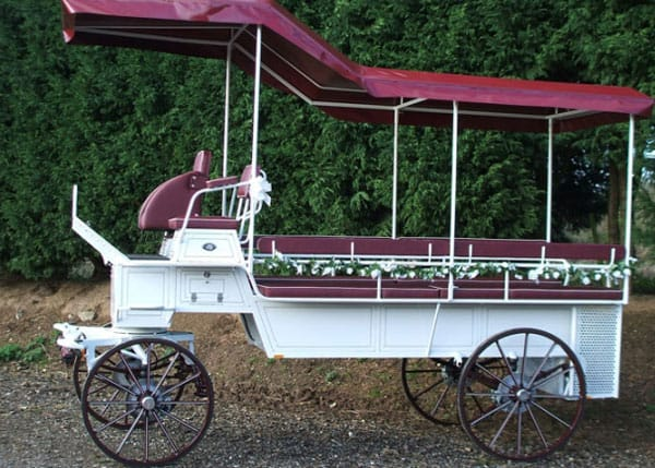High Seat Break Carriage Hire - Drayhorse Shires Australia