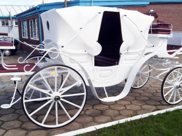 Vis A Vis Carriage Hire - Drayhorse Shires Australia