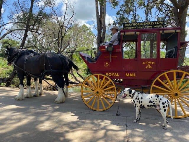 Cobb & Co Wagon Tours